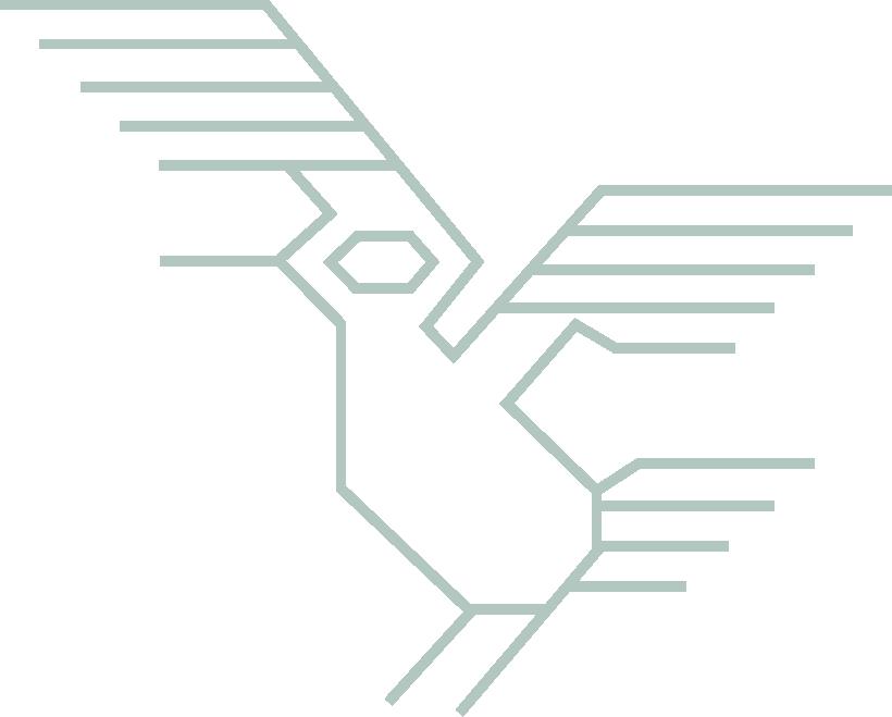Inca Mythical Bird